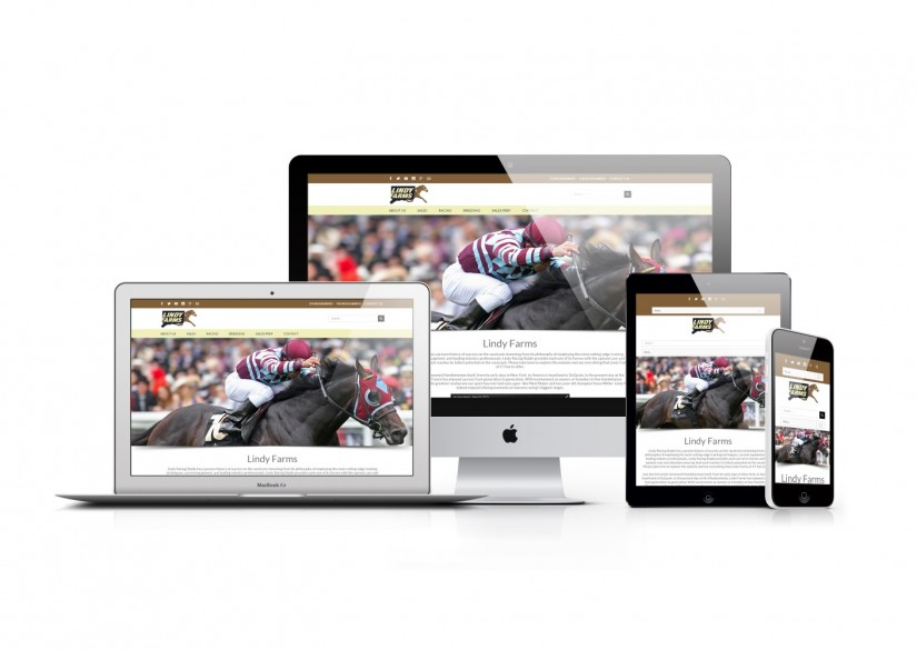 Connecticut Web Design - WordPress Horse Website